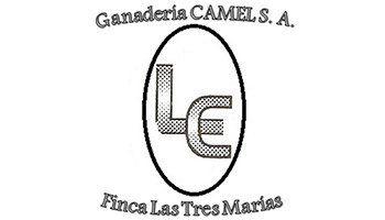 Ganadería Camel Cliente de MBO