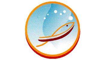 Grupo Ducan Cliente de MBO